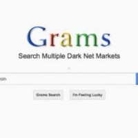 Grams-Search-EngineWEB-home-page11-660x338